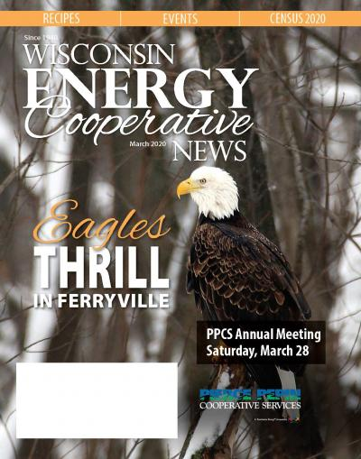 Wisconsin Energy Cooperative News - March 2020 local pages