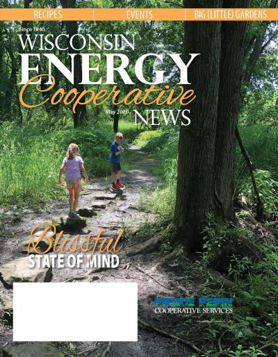 Wisconsin Energy Cooperative News - May 2020 local pages